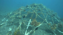 Artificial reef covered in marine growth on ocean floor - stock footage
