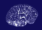Stock Illustration of Brain impulses. Thinking prosess.