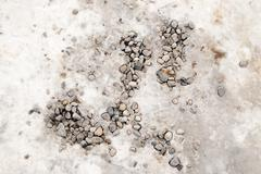 background of stone rubble in the snow - stock photo