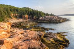 Acadia Morning at Monument Cove Stock Photos