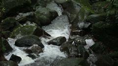 Tropical stream El Yunque Rainforest Puerto Rico HD 0675 Stock Footage