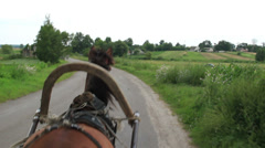 Horse transportation carries harness wheel cart, village road Stock Footage