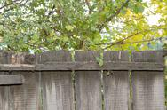 Stock Photo of wooden fence in nature as the background