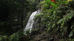 Waterfall El Yunque National Park Rainforest Puerto Rico HD 1764 Stock Footage