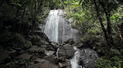 Waterfall jungle El Yunque National Park Rainforest Puerto Rico HD 1769 - stock footage