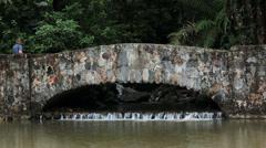 Woman bridge El Yunque Rainforest National Park HD 0705 Stock Footage