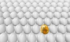 Golden egg Stock Illustration