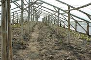 Stock Photo of empty wooden greenhouse before planting seedlings