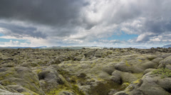 Moss-covered lava fields Stock Footage