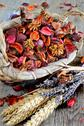 Stock Photo of dried flowers