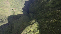Aerial Shot Hawaii Manoa Falls Stock Footage