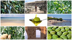 Mediterranean olives collage Stock Footage
