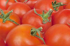 bunch of tomatoes alongside - stock photo
