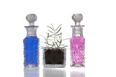 Blue pink crystal glass bottles Stock Photos