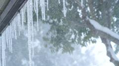Winter blizzard. Stock Footage