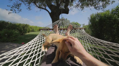 Man and dog relaxing on the hammock. - stock footage