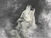 Stock Illustration of wolf, handmade illustration on grey background