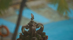 Birdies on the elements of Hindu architecture Stock Footage