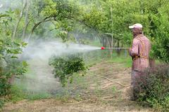 Farmer spray pesticide Stock Photos