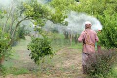 farmer spray pesticide - stock photo