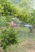 farmer spray pesticide - stock photo