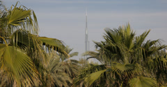 Ultra HD 4K World Tallest Building Burj Khalifa Dubai Skyline Exotic Palm Tree Stock Footage