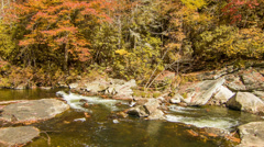 Water Stream with Fall Colored Trees at Linville Falls, NC Stock Footage