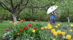 Spring garden colorful tulips  woman welly shoes umbrella walk Stock Footage