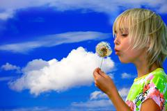little girl blows on a seedy pod plant as seeds drift off - stock photo