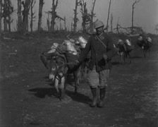 WW1 - French Soldiers Transport Of Water To Front line 01 Stock Footage