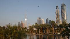 Birds Flying Safa Park Dubai Skyline Skyscraper Burj Khalifa Beautiful Palm Tree Stock Footage