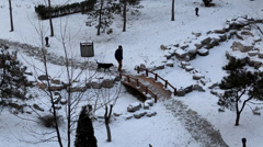 Man and his dog walking in garden on a snowy day Stock Footage