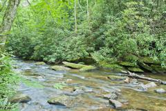blue ridge creek - stock photo