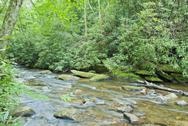 Stock Photo of blue ridge creek