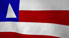 Bahia State Flag Textured (Loop-able) Stock Footage