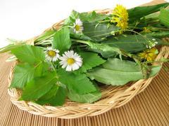 Wild herbs in basket Stock Photos
