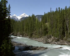 Meltwater stream in spring, Kicking Horse River Valley in Yoho National park Stock Footage