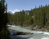 Stock Video Footage of Meltwater stream in spring, Kicking Horse River Valley in Yoho National park