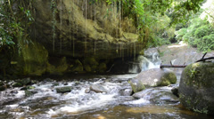 A cute river in the tropics with a small waterfall Stock Footage