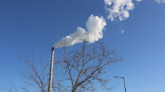 Smoke from a tall chimney and a tree without leaves Stock Footage