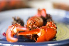 Crayfish on a plate with selective blur - stock photo