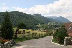 Driveway Leading To The Village - stock photo