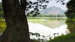 Nature of Sri Lanka mountain lake. Camera motion slider Stock Footage