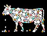 Stock Illustration of Tablets Pills Cow