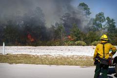 Florida wild land fire Stock Photos