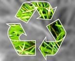 Stock Illustration of recycle symbol .