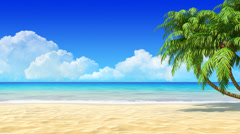 Tropical sand beach background with palms. Stock Footage