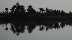 Palms on the shores of the Nile, Camera boat Stock Footage