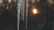 Stock Video Footage of Melting Icicles at Sunrise 2
