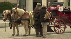 Berlin, Brandenburger Tor, carriage Stock Footage
